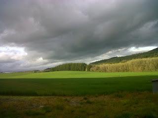 Oregon-by-Shelley-Collis